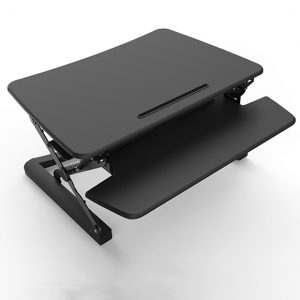 Rapid Riser Sit Stand